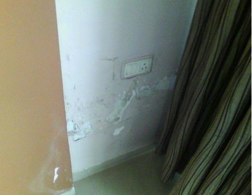 Home Inspection For Damped Wall And Celings